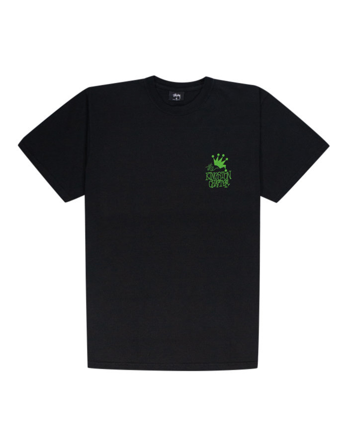 Stussy kingston t-shirt in black