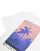 STUSSY FIRE PALM T-SHIRT IN WHITE Thumbnail