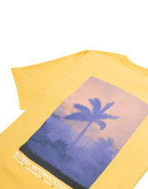 STUSSY FIRE PALM T-SHIRT IN ORANGE Thumbnail
